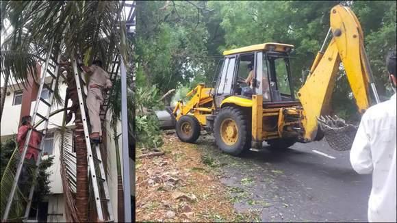 વાવાઝોડા બાદ વડોદરામાં પીજીવીસીએલની ક્વિક રિસ્પોન્સ ટીમો દ્વારા તાબડતોબ કામગીરીઃ ૮૫ પૈકી ૫૯ વિજ થાંભલા ઉભા કરી દીધા