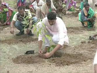નર્મદાના નાંદોદના કુંવરપરા ગામને 70 વર્ષ બાદ ગ્રામ પંચાયતનો દરજ્જો મળ્યો: બે વર્ષમાં વિકાસની હરણફાળ