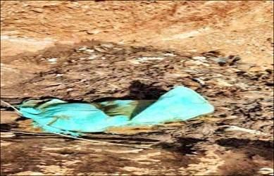 ધનસુરા તાલુકાના કોલવડાથી હમીરપુર રોડ નજીક અજાણ્યા શખ્સો દ્વારા  ખાડામાં બે હજારથી વધુ મૃત મરઘાં ઠાલવી દેવામાં આવતા લોકોમાં આક્રોશ