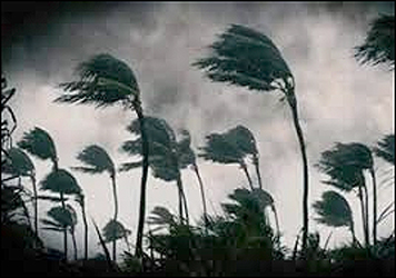 દરિયાકાંઠે ત્રાટક્યું વાવાઝોડુ : આસપાસના વિસ્તારમાં જોરદાર પવન સાથે ભારે વરસાદ